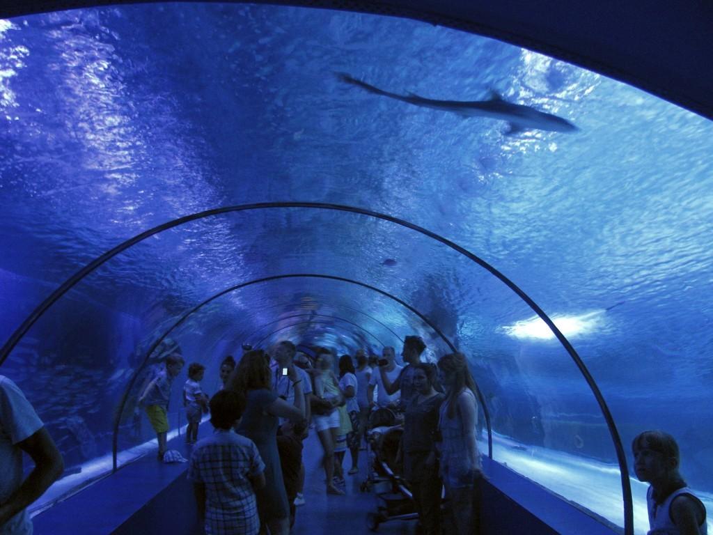 Океанариум в Анталии, Турция . Подводный тоннель