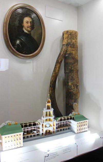 Сосна, запримеченная Петром I - место, где был основан музей Кунсткамера / Кунсткамера краткое описание / ketvilz.ru