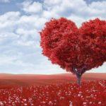 День Святого Валентина в разных странах мира / ketvilz.ru